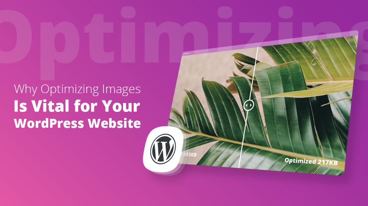 Why Optimizing Images is Vital for your WordPress Website
