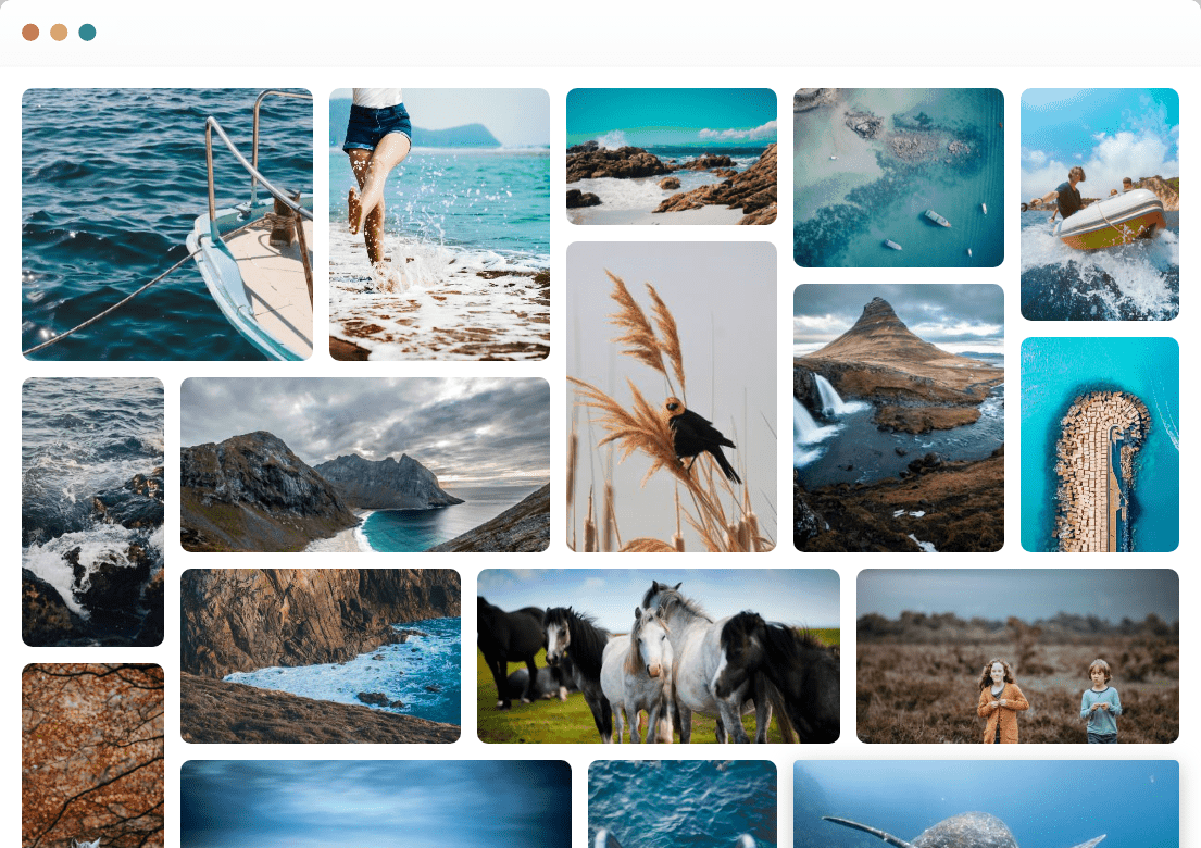 World's Leading Photo Gallery Plugin